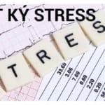 NHAT KY STRESS